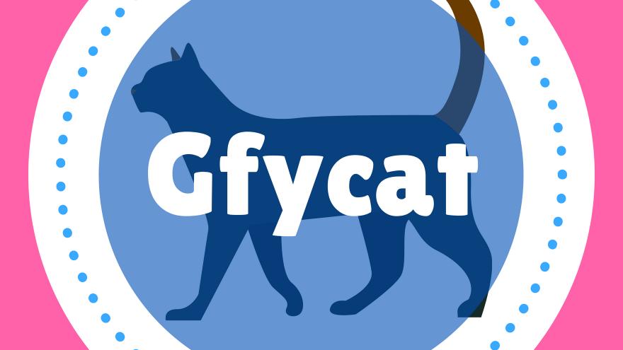 GIFのホスティングサービスのGfycat